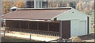 Agricultural-Building-Heifer-Barn